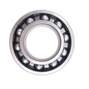 SKF NSK Timken 6007 Deep Groove Ball Bearing for Motorcycle Parts
