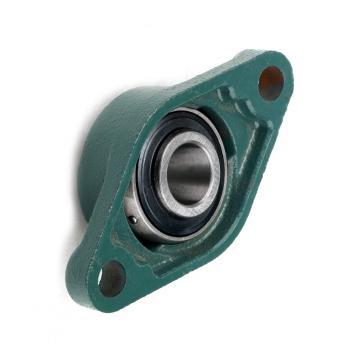 Spherical Plain Bearings (GE140ES) Ge180es Series Ge200 Series